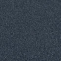 L1020233 | Natural leather | Schauenburg