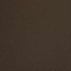 L1020235 | Natural leather | Schauenburg