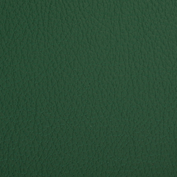 L1020238 | Natural leather | Schauenburg
