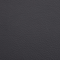 L1020241 | Natural leather | Schauenburg