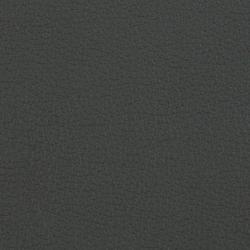 L1020249 | Natural leather | Schauenburg