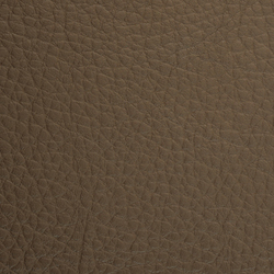 L1030324 | Natural leather | Schauenburg