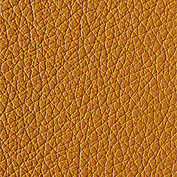 L1040417 | Natural leather | Schauenburg