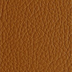 L1040418 | Natural leather | Schauenburg