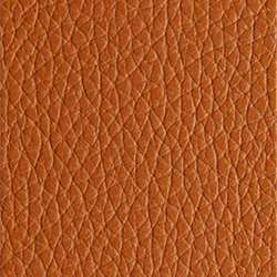 L1040419 | Natural leather | Schauenburg