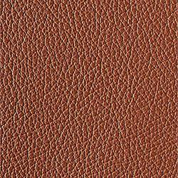 L1040420 | Natural leather | Schauenburg