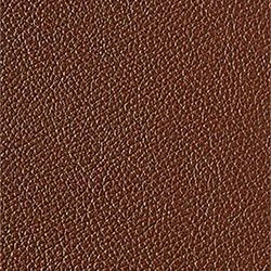 L1040421 | Natural leather | Schauenburg