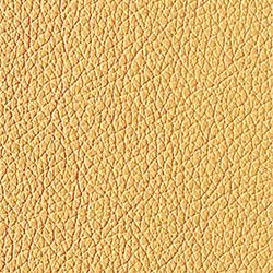 L1040424 | Natural leather | Schauenburg