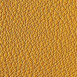 L1040426 | Natural leather | Schauenburg