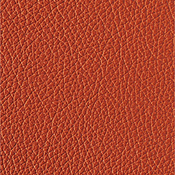 L1040429 | Natural leather | Schauenburg