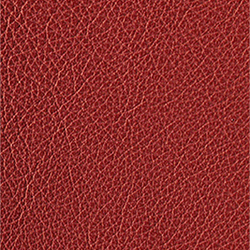 L1040433 | Natural leather | Schauenburg