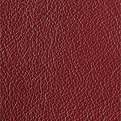L1040434 | Natural leather | Schauenburg
