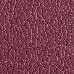 L1040435 | Natural leather | Schauenburg