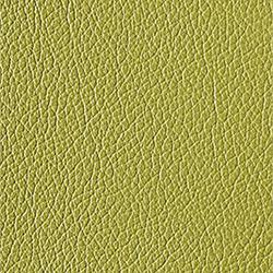 L1040441 | Natural leather | Schauenburg