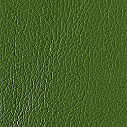 L1040442 | Natural leather | Schauenburg