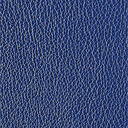 L1040448 | Natural leather | Schauenburg