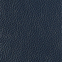 L1040449 | Natural leather | Schauenburg