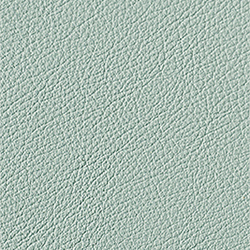L1040450 | Natural leather | Schauenburg