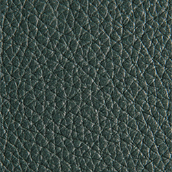 L1040453 | Natural leather | Schauenburg