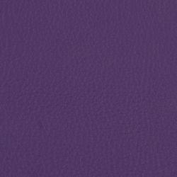L1050501 | Naturleder | Schauenburg