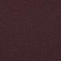 L1060608 | Natural leather | Schauenburg