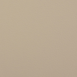 L1060616 | Leder | Schauenburg