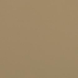 L1060617 | Leder | Schauenburg