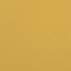 L1060623 | Vera pelle | Schauenburg