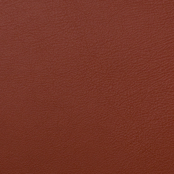 L1060627 | Natural leather | Schauenburg