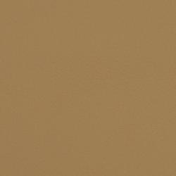 L1090909 | Natural leather | Schauenburg