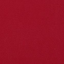 L1090918 | Natural leather | Schauenburg
