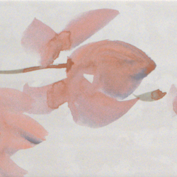 Sole Petali Bianco | Slabs | Fap Ceramiche