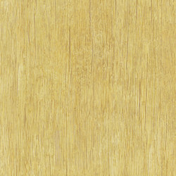 Expona Domestic - Lemon Yellow Wood | Paneles de plástico | objectflor