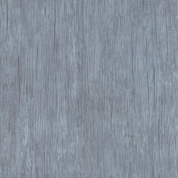 Expona Domestic - Lavender Blue Wood | Plastic sheets/panels | objectflor