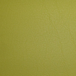 skai Neptun Caleri lime | Colour solid/plain | Hornschuch