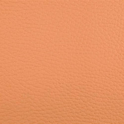 K304200 | Faux leather | Schauenburg