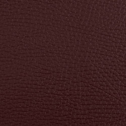 K304400 | Faux leather | Schauenburg