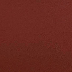 K310320 | Faux leather | Schauenburg