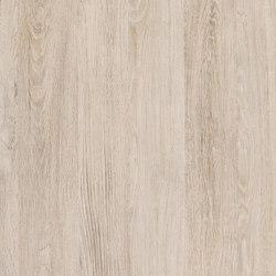 Woods Santana Oak kalk | Maglia/rete | Hornschuch