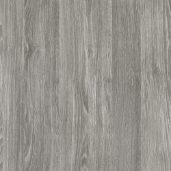 Woods Sheffield Oak perlgrau | Decorative films | Hornschuch