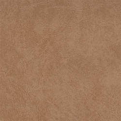 K317320 | Faux leather | Schauenburg