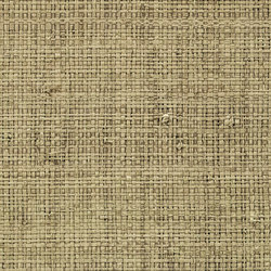 Robinson | Tissage de raphia enduit RM 904 92 | Wall coverings | Élitis