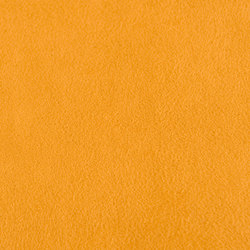 M20101015 | Fabrics | Schauenburg