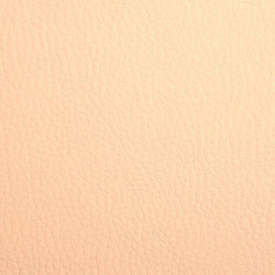 K318130 | Faux leather | Schauenburg