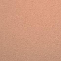 K318155 | Faux leather | Schauenburg