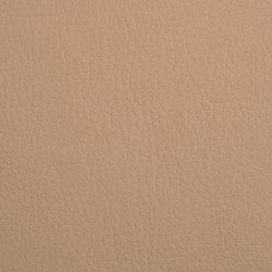 K318160 | Faux leather | Schauenburg