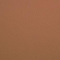 K318240 | Faux leather | Schauenburg