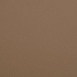 K318245 | Finta pelle | Schauenburg