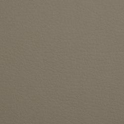 K318390 | Finta pelle | Schauenburg
