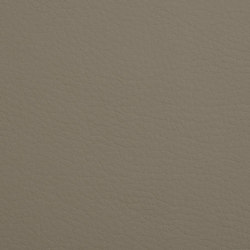 K318390 | Faux leather | Schauenburg